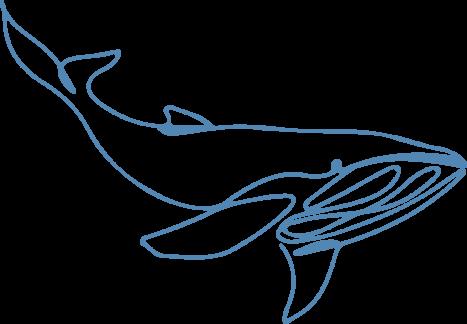 spear-phishing whaling
