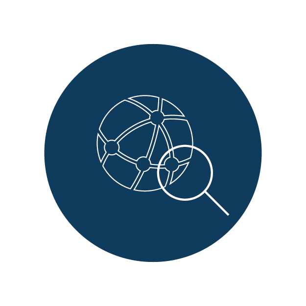 PSN Icon web Network Scope